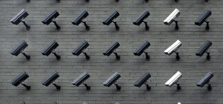 Imagem ilustrativa da matéria Educação e arte contra a vigilância